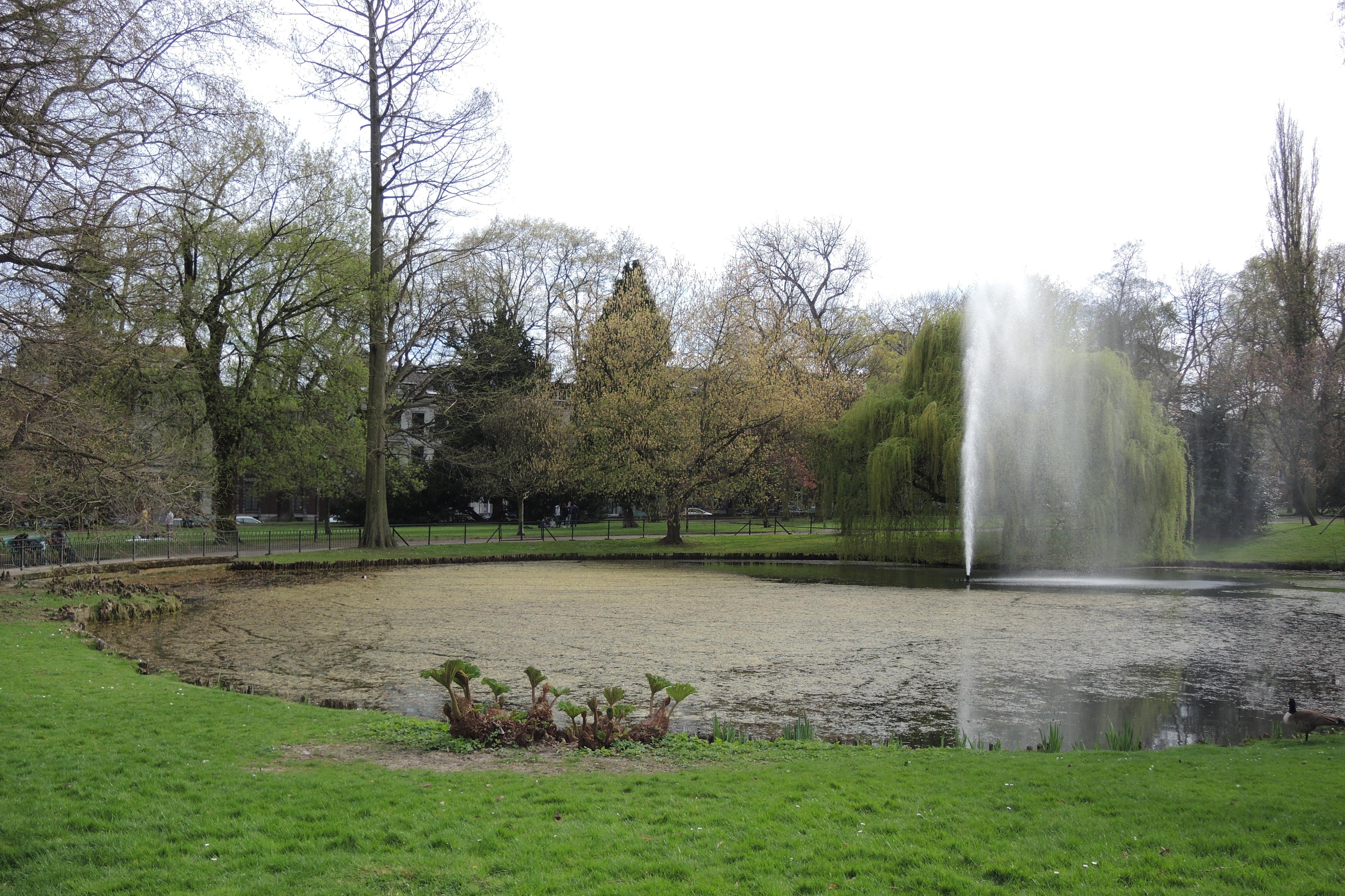 Trois parcs o profiter du soleil for Jardin botanique hiver 2015